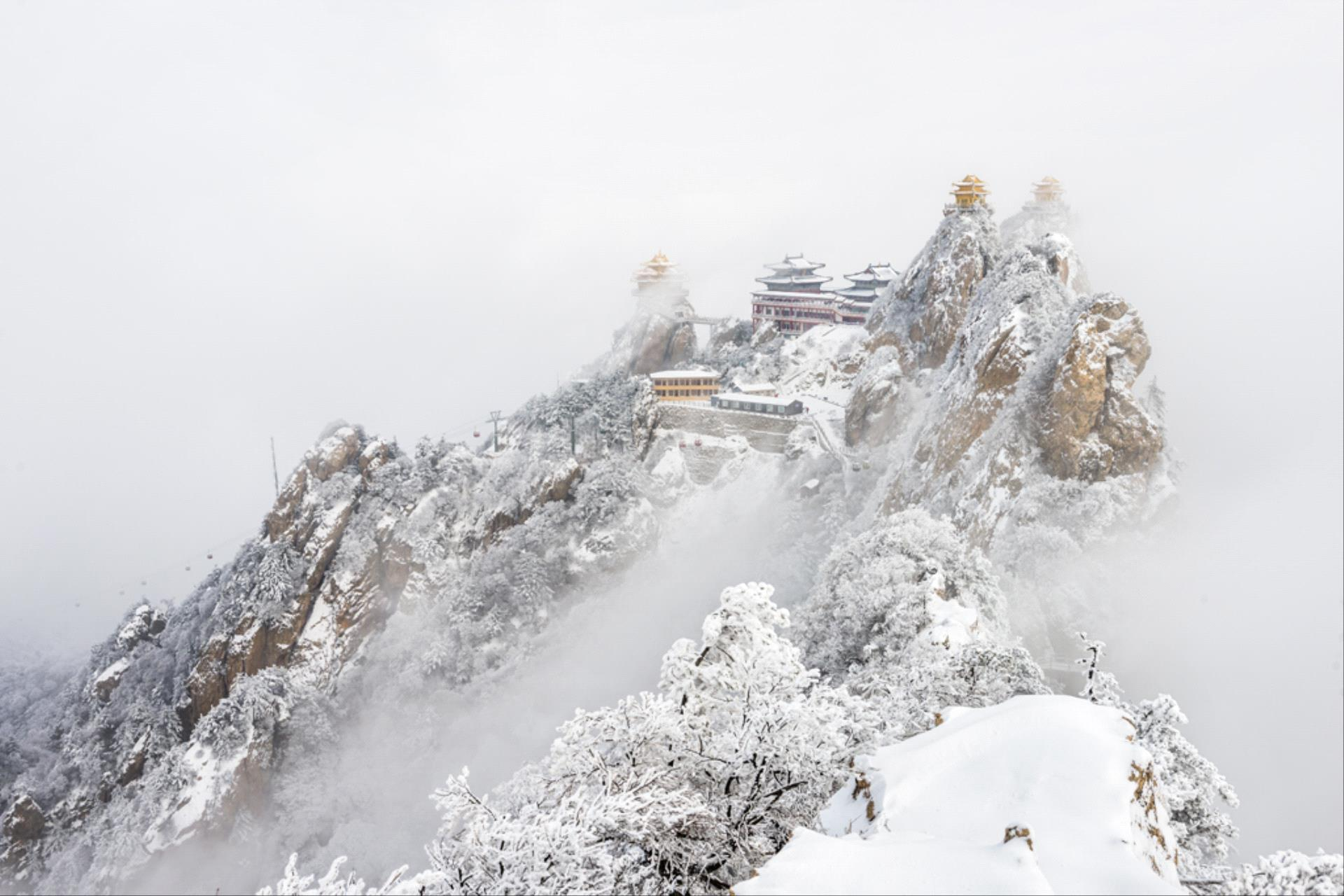 SIHIPA Gold Medal - Qituan Xiang (China) <br /> Covered With Snow
