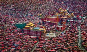 SIHIPC Merit Award - Guixiang Huang (China)  Land Of Buddha