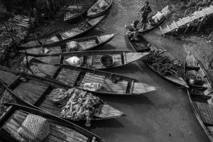 PhotoVivo Honor Mention - Xiao Chen (China) <br /> Shoreside