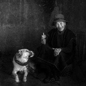 SIHIPC Merit Award - Yunhui Dong (China) <br /> Companionship