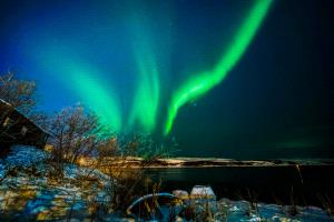 PSA HM Ribbons - Jiajun Chai (China) <br /> Aurora borealis2