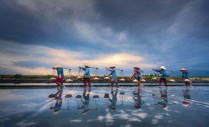 APAS Gold Medal - Huifen Wang (China)  Busy Salt Fields 3