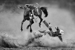 PhotoVivo Honor Mention - Kam Chiu Tam (Canada)  The Fury Horse