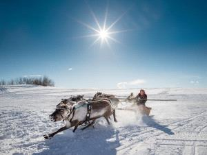 SIHIPC Merit Award - Alexey Suloev (Russian Federation) <br /> Racing On The Reindeer-Yamal