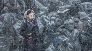 SIHIPC Silver Medal - Haiyan Wu (China)  Snow Lotus