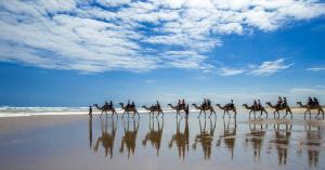 SIHIPC Merit Award - Yongxiong Ling (Australia)  Walking