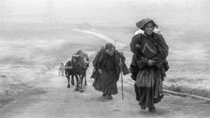 PhotoVivo Silver Medal - Yongming Liu (China) <br /> A Long Way To Go