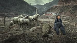 SIHIPC Bronze Medal - Dunrong Wang (China)  A Shepherd Girl